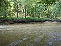 Patuxent River State Park 61.jpg