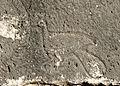 Peafowl - İmirzeli 01.jpg