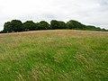 Peak of Park Hill - geograph.org.uk - 505871.jpg