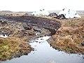 Peat Cutting, Shetland - geograph.org.uk - 145364.jpg