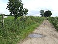 Peddars Way - geograph.org.uk - 473914.jpg