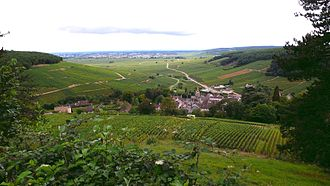 Corton (wine) - A view over Pernand-Vergelesses and surrounding vineyards, with the Corton hill on the left side.