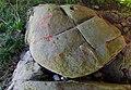 Petroglifos do Vilar - Ames - 08 - Petroglifo III.jpg