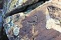 Petroglyphs from Ukhtasar 15092019 (28).jpg