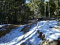 Pickle's Gulch Trail - panoramio (2).jpg