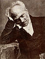 Picture of Schopenhauer.jpg