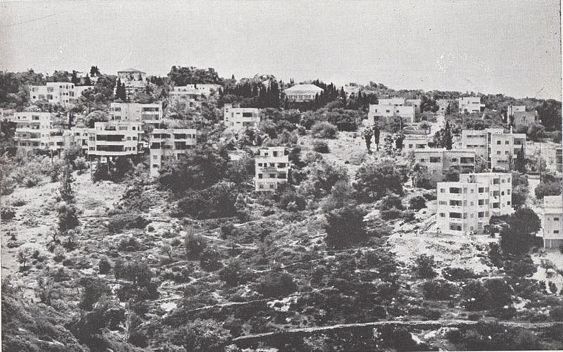 מראה כללי של חיפה