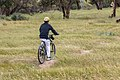 PikiWiki Israel 73904 bike rider.jpg