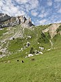 Pilatus, Švajčiarsko, 2011 - panoramio.jpg