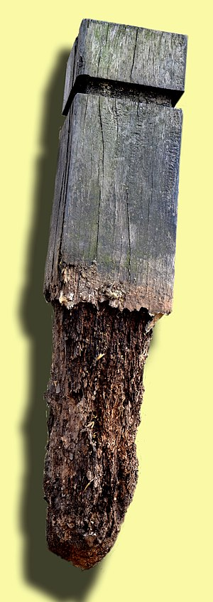 Wood preservation - In moist and oxygenated soil, there are few treatments that enable vulnerable wood (softwood here) to resist for long against bacterial or fungal degradation