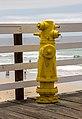Pismo Beach (California, USA), Hydrant -- 2012 -- 4768.jpg