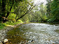 Pohorelá Hron river 40350.jpg