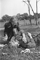 Polish victim of German Luftwaffe action 1939
