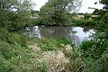Pond, Near Morton Grange - geograph.org.uk - 545273.jpg