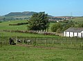 Ponies at Ballochbroe - geograph.org.uk - 243555.jpg