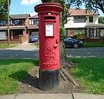 Post box on Bowring Park Avenue.jpg