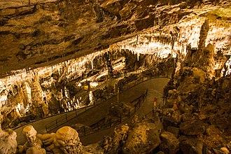 Postojna Cave - Image: Postojna Cave (18264483725)