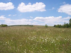 Prairie agriculture wikip dia - Chambre agriculture meurthe et moselle ...