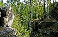 Prigorodnyy r-n, Sverdlovskaya oblast', Russia - panoramio (23).jpg