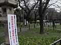 Prohibit of Hanami in Yasukuni Shrine by COVID-19 02.jpg