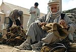 Projects throughout Bagram Airfield DVIDS254416.jpg