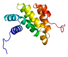 Protein PDCD4 PDB 2ggf.png