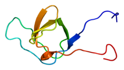 Protein PSTPIP1 PDB 2dil.png