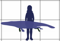 Protocetus size.png