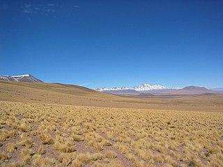 Pular (volcano) mountain in El Loa Province Chile