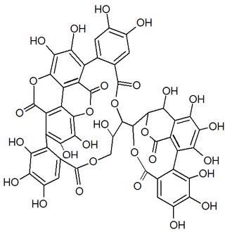Punicacortein C - Image: Punicacortein C