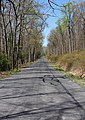 QR 1010 (Sugar Valley Road).jpg