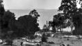 Queensland State Archives 298 Looking from Boreen Point across Lake Cootharaba c 1931.png
