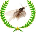 Récompense myrmécologie.png