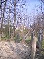 Régi evangélikus temető, 2008 Oroszlány014.jpg