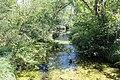 Réserve naturelle Marais Lavours Aignoz Ceyzérieu 117.jpg