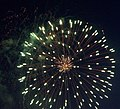 RPO Fireworks 1 - Flickr - mamamusings.jpg