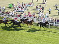 Racecourse In Chester2.jpg