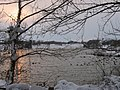 Rachel carson greenway pond.jpg