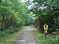 Radweg Nationalpark Kellerwald-Edersee Asel-Süd Bringhausen.JPG