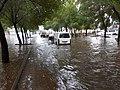 Rain in Madina city - panoramio (2).jpg