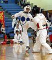 Release0204-2004-05-karate-2009-24-06.jpg