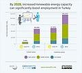 Renewable energy increases employment in Turkey.jpg