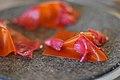 Restaurant Noma Læder af gulerod og havtorn med syltede hybenrosenblade (4959167805).jpg