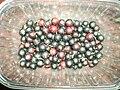 Ribes Odoratum3.JPG
