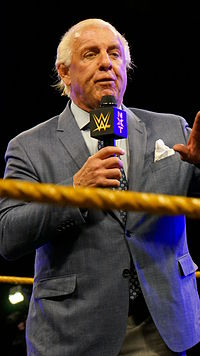 Ric Flair bei NXT (2014)