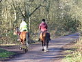 Riders on Great Bookham Common - geograph.org.uk - 676386.jpg
