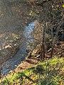 Riu Abella.jpg