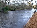 River Coquet at Slidden Braes - geograph.org.uk - 304851.jpg