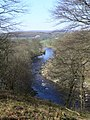 River Wharfe - geograph.org.uk - 435882.jpg