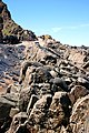 Rocks on Hartland Quay beach (5990525971).jpg